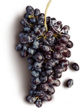 Grapes and Stamp